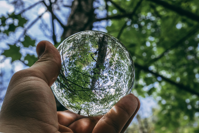 ball-shaped-close-up-daylight-1125298